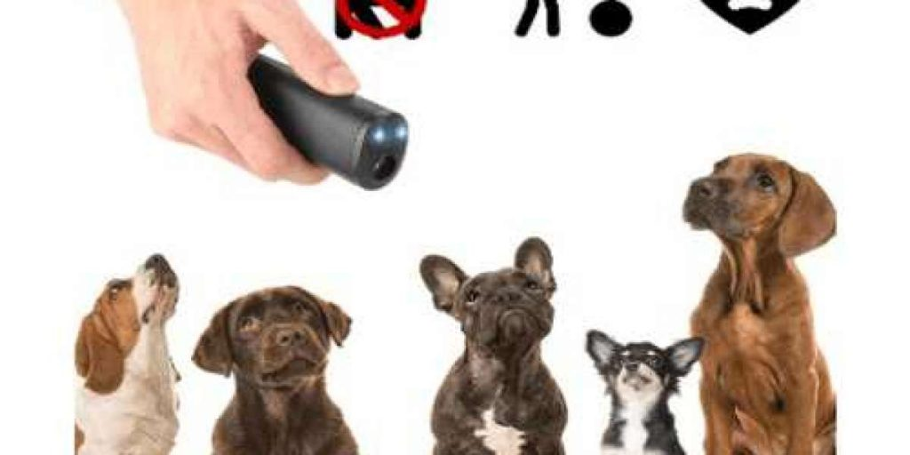 pet barxbuddy device